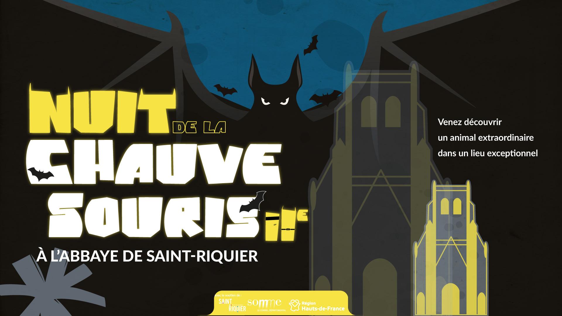 """Featured image for """"Nuit de la Chauve-souris 2"""""""